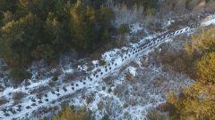 【新春走基層 記者在戰位】零下20℃ 冰天雪地練生存