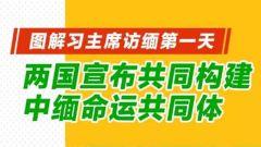 图解习主席访缅第一天:两国宣布共同构建中缅命运共同体