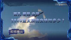 《軍事制高點》20200126 面孔 重器 變局 2020亞太頂流交鋒知多少