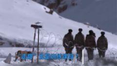 走路也是一项训练?新兵们的高海拔适应性训练开始了