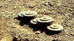 欧盟谴责美国放松反步兵地雷使用限制