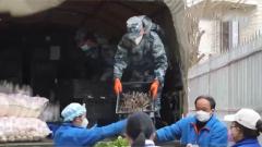 【直通疫情防控一线】 电话连线:运力支援队首次向雷神山医院运送物资