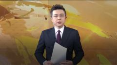 解放军报评论员文章:积极支援地方疫情防控