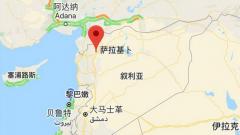 关注叙利亚局势 叙政府军攻下伊德利卜省重镇萨拉基卜