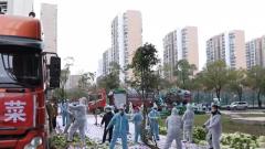 【打赢疫情防控阻击战】 湖北武汉:100吨爱心蔬菜抵达 退役军人志愿者帮助分发