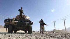 美防长:美将与阿富汗塔利班停火一周