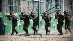 初春战意浓!武警克拉玛依支队组织特战队员开展捕歼战斗演练