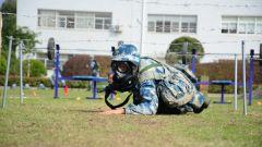 直击空降兵训练场:疫情防控一步不退,练兵备战一刻不停!