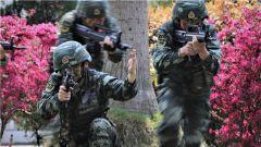 武警贺州支队:阳春三月练兵忙 实战实训谋打赢