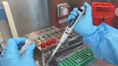 血浆疗法:康复者血浆是怎么起到治疗作用的?