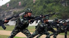 """武警广西总队训练基地:紧贴实战标准  锤炼战场""""铁拳头"""""""