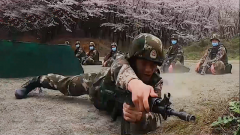 武警贵州总队安顺支队:樱花盛开处 练兵正酣时