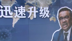 """【全球战""""疫""""进行时】 世卫组织:各国需加强病毒检测"""
