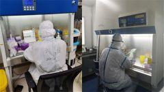 逆行夫妻 共赴戰場:微生物學博士夫妻攜手抗疫紀實