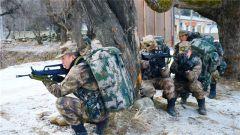 聚焦實戰 苦練精兵 西藏軍區某邊防團開展實戰化戰備演練