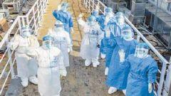 军队支援湖北医疗队治愈出院患者突破4000人