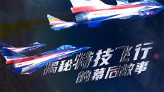《军事纪实》20200325 揭秘特技飞行的幕后故事