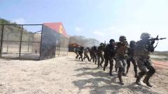 """""""金龙-2020""""中柬联合训练:两军官兵协同作战"""