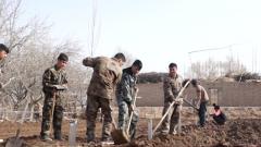 """新疆喀什:为村民送去致富增收的""""金钥匙"""""""