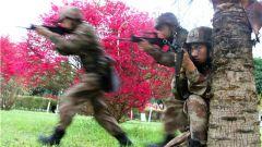 从这里走向战场!陆军第77集团军某旅开展实战化对抗演练