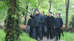 習近平考察杭州濕地保護利用和城市治理情況