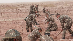 新疆阿克苏:武警官兵义务植树为荒漠添新绿