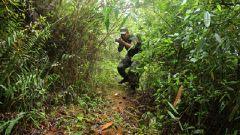 南部戰區陸軍某邊防旅:巡邏路上加鋼淬火