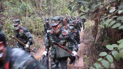 云南陇川:武警官兵联合地方救援力量成功扑救一起森林火灾