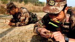 """练就""""铜线飞人""""!陆军第77集团军某旅开展有线专业集训"""