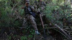 新闻特写:穿越丛林 目标54号界碑