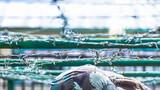 一起来解锁你不知道的雪域高原练兵场吧!中国军视网本周的高清壁纸来了,马上收藏换屏保吧!(存图方法:长按图片-保存至手机)图为单兵战术训练。