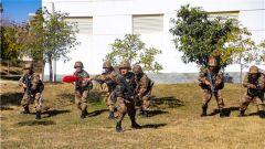陆军第75集团军某旅开展班进攻综合演练 锤炼官兵打赢能力