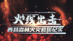《军事纪实》20200424火线出击·西昌森林火灾救援纪实