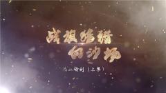 《讲武堂》20200426 战旗猎猎向沙场之热血砺剑(上集)