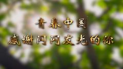 【五四青年节】奋斗是青春最亮丽的底色 感谢闪闪发光的你