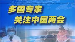 多国专家:关注中国两会 了解抗疫经验