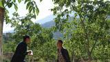 吉克石乌(左)向村里的种养大户吉克尔布了解情况(5月9日摄)。