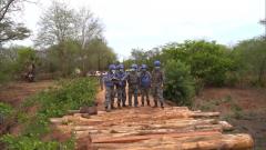 中国赴南苏丹维和工兵分队完成桥梁修复任务
