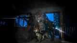 战斗小组携军犬对房屋进行突击