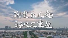 时政微纪录丨荆楚东风起 浴火正重生——习近平参加湖北代表团审议纪实