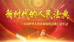 新时代的人民法典——《中华人民共和国民法典》诞生记