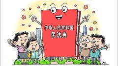为人类法治文明进步贡献中国智慧和中国方案——国际社会高度关注全国人大会议通过民法典