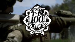 【军视100秒】不一样的枪托