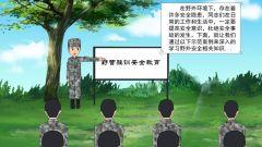 漫说健康:野营驻训安全科普漫画