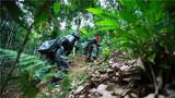 边防官兵巡逻在彩云之南,用脚步丈量祖国的边防线。