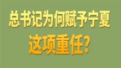 第一观察丨总书记为何赋予宁夏这项重任?
