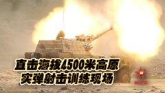【第一军视】海拔4500米高原实弹射击训练 火光冲天场面震撼