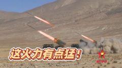 【第一军视】重装分队出击 这火力有点猛!