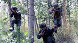 丛林搜索训练