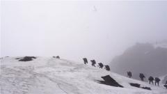 【我為祖國守邊關】穿越叢林雪山 八天八夜生死巡邏路